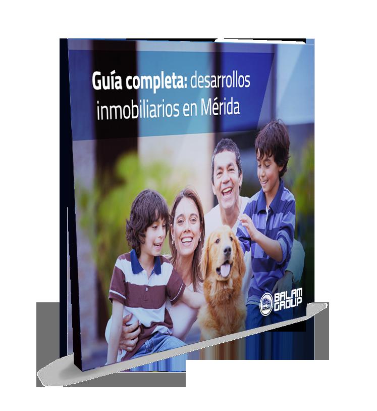 20desarrollos_cover.png
